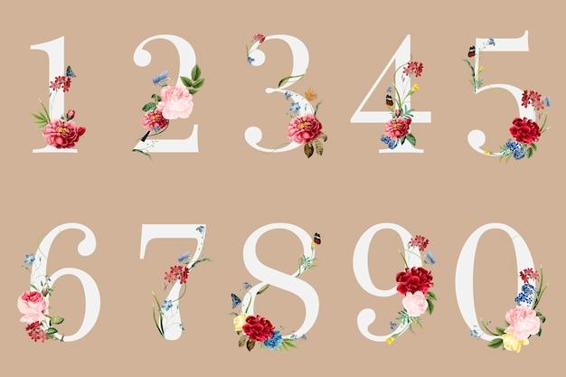 Números botánicos con ilustración de flores tropicales vector gratuito