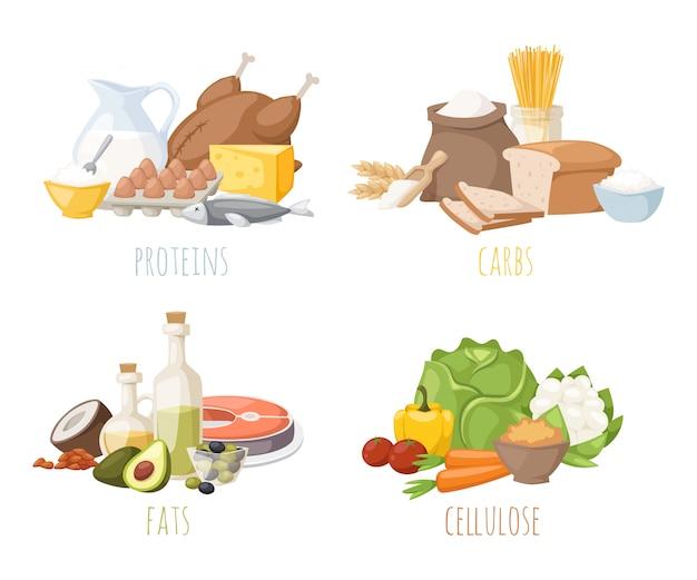 Nutrición saludable, proteínas, grasas, carbohidratos, dieta equilibrada, cocina, culinaria y concepto de alimentos vector. Vector Premium