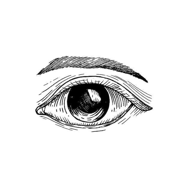 Ojo humano dibujado a mano vector gratuito