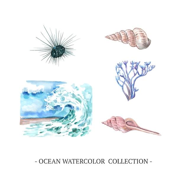 Ola, concha, coral ilustración acuarela sobre fondo blanco para uso decorativo. vector gratuito