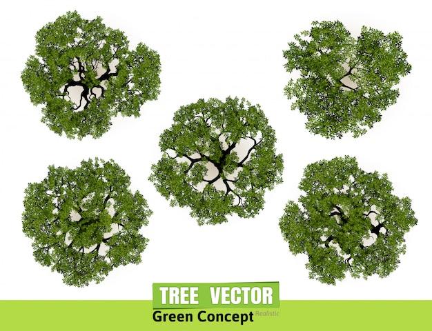 Opinión superior de los árboles para la ilustración del vector del paisaje. Vector Premium