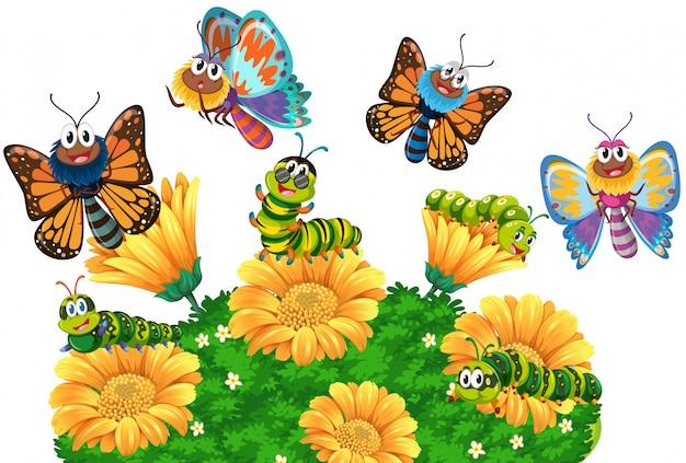 Orugas y mariposas en el jardín. vector gratuito