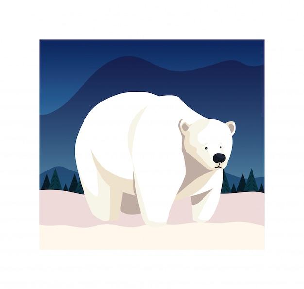 Oso polar en el polo norte Vector Premium