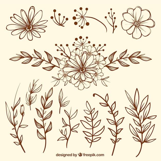 Pack De Bocetos De Flores Vintage Descargar Vectores Gratis