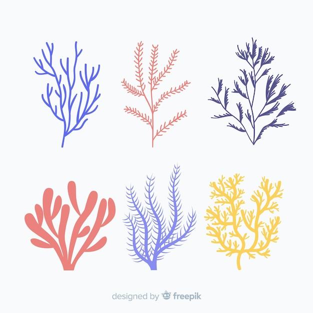 Pack coral dibujado a mano vector gratuito