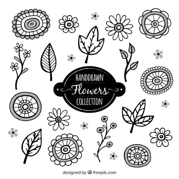 Pack de flores y hojas decorativas descargar vectores gratis for Plantas decorativas hojas