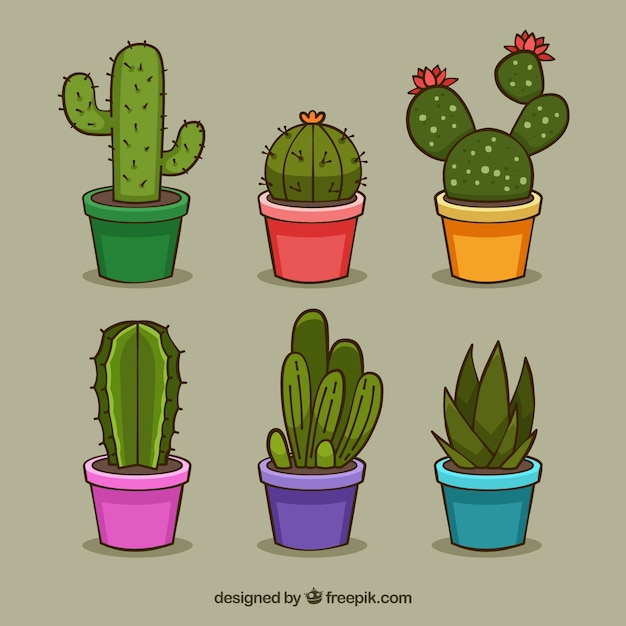 Pack divertido de cactus coloridos vector gratuito