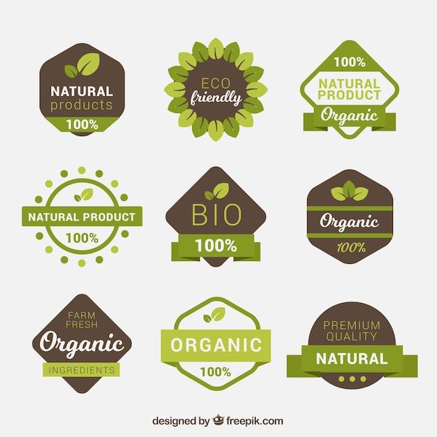Pack de etiquetas de alimentos orgánicos verdes y marrones vector gratuito