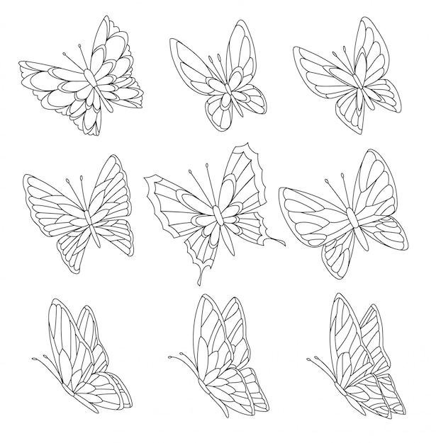 Página De Libro Para Colorear De Mariposas Aisladas En