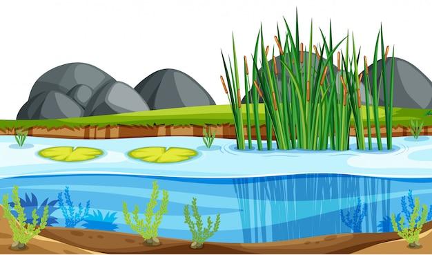 Un paisaje de estanque natural. vector gratuito