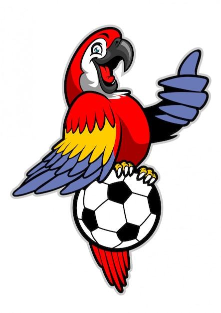 Pájaro de guacamayo rojo de pie sobre el balón de fútbol Vector Premium