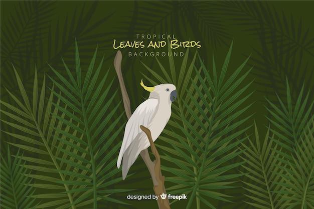 Pájaros y hojas tropicales vector gratuito