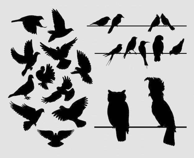 Paloma pájaro silueta animal Vector Premium
