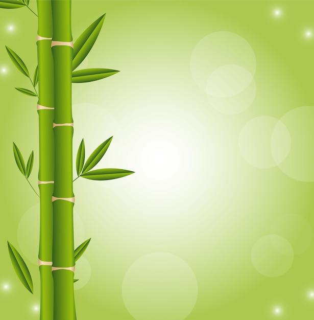 Palos De Bambu Con Espacio Para Copiar Vector De Fondo Verde - Palos-de-bambu