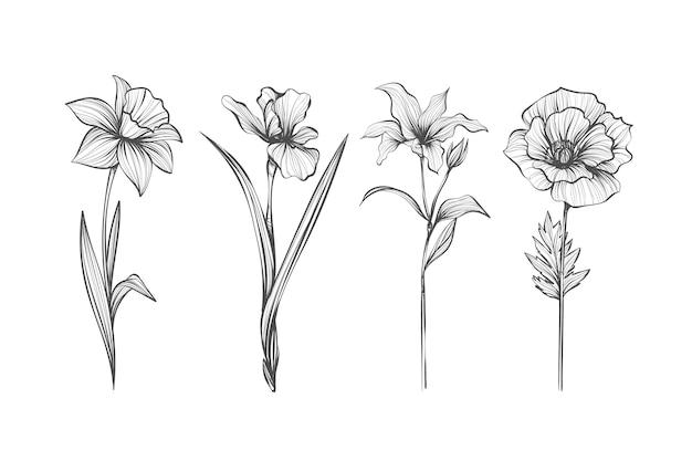 Paquete de flores de botánica vintage dibujado a mano realista vector gratuito