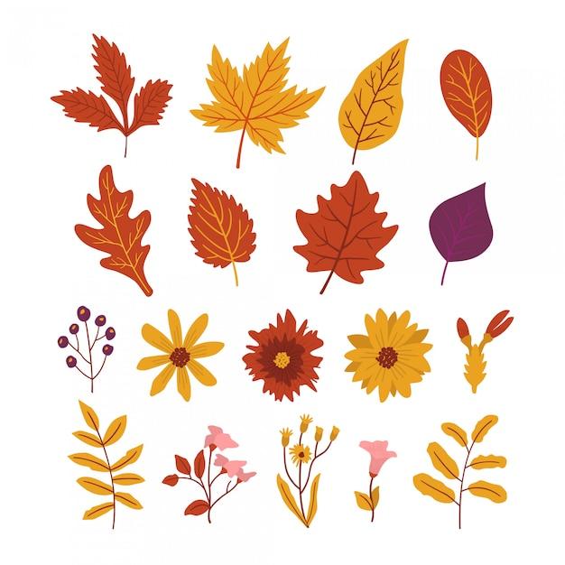 Paquete de hojas y hermosas flores de otoño. Vector Premium