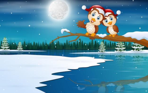 Pareja De Búhos Con Sombreros De Navidad En Paisaje De