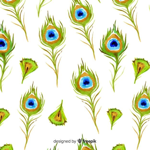 Patrón adorable de plumas de pavo real en acuarela | Descargar ...