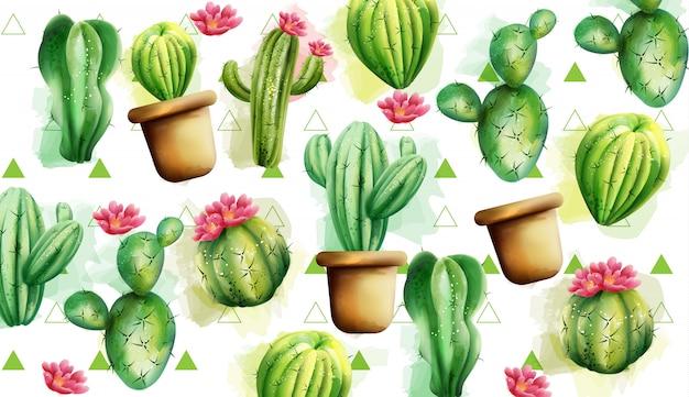 Patrón de cactus con triángulos verdes en el fondo. cactus con flores vector gratuito