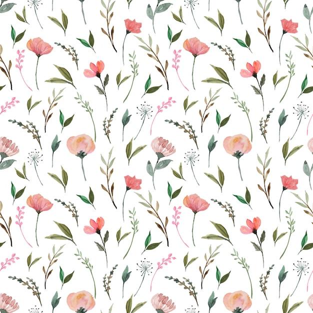 Patrón floral transparente con hermosas flores silvestres rojas Vector Premium