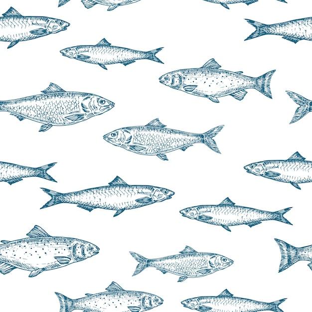 Patrón de fondo transparente de peces dibujados a mano. vector gratuito