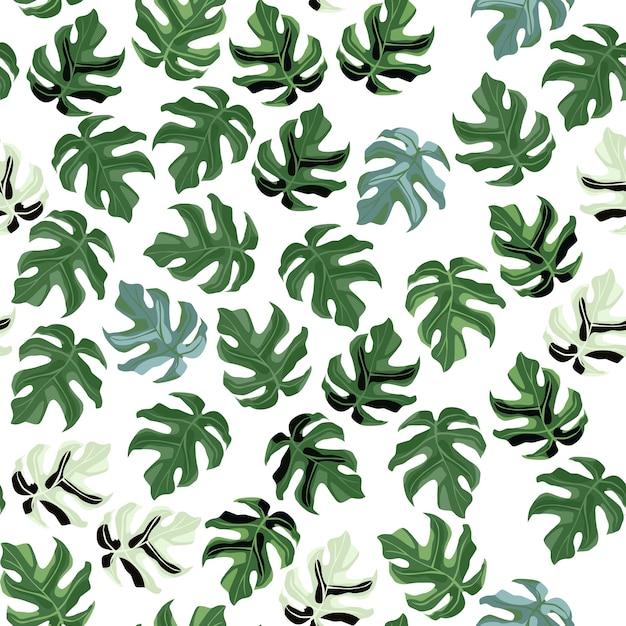 Patrón de hoja de monstera transparente aleatorio. pequeño adorno botánico verde sobre fondo blanco. ed para papel tapiz, textil, papel de regalo, estampado de tela. ilustración. Vector Premium