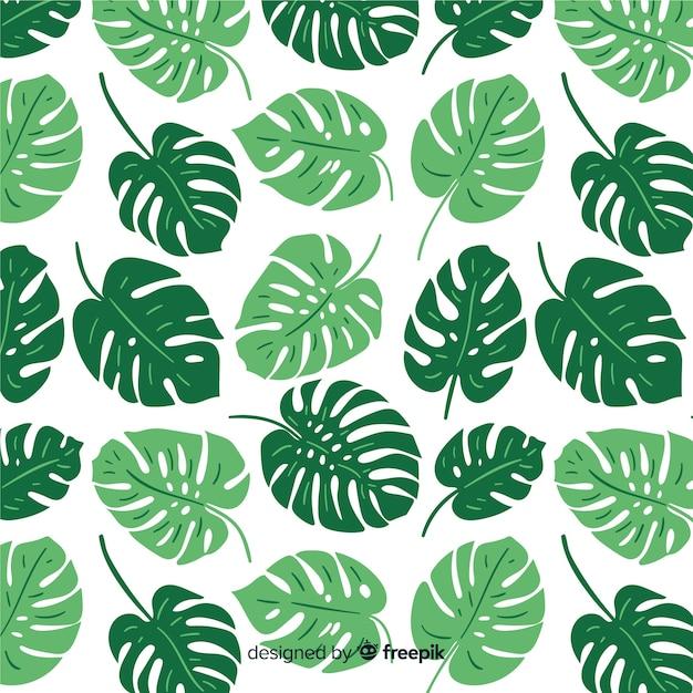 Patrón hojas de monstera dibujadas a mano vector gratuito