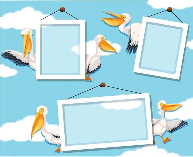 Pelican en marco de fotos vector gratuito