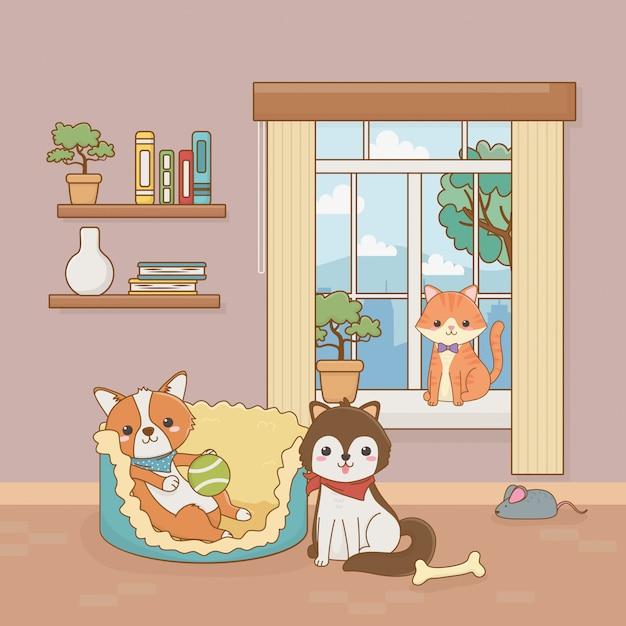 Pequeñas mascotas de perros y gatos en la habitación de la casa Vector Premium