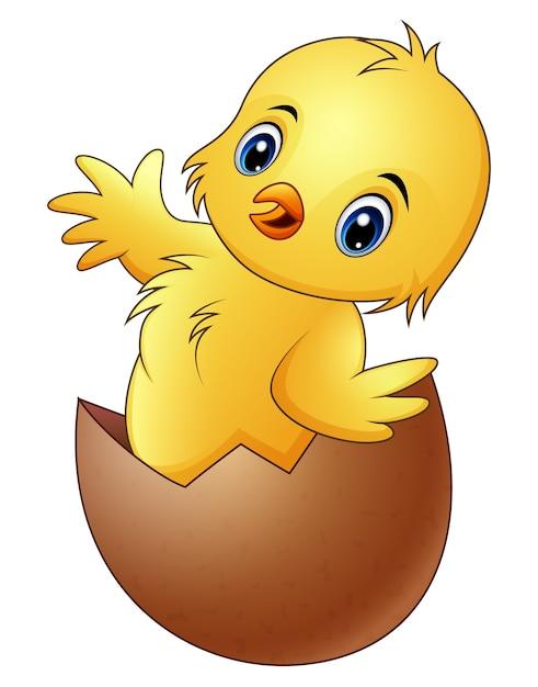 Pequeño pollito de dibujos animados en la cáscara de huevo roto ...