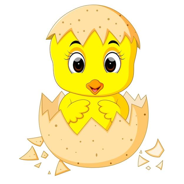 Pequeño Pollito De Dibujos Animados Nacido De Un Huevo
