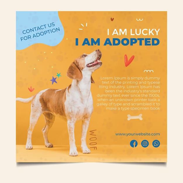 Perro afortunado adopta una plantilla de volante cuadrado para mascotas Vector Premium