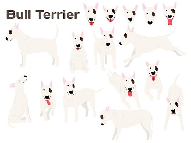 Perro bull terrier en acción Vector Premium