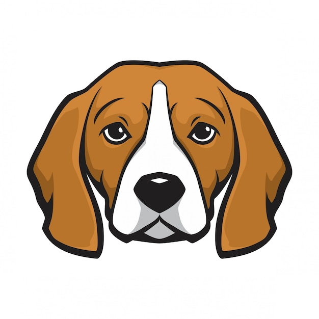 Perro cabeza de beagle Vector Premium