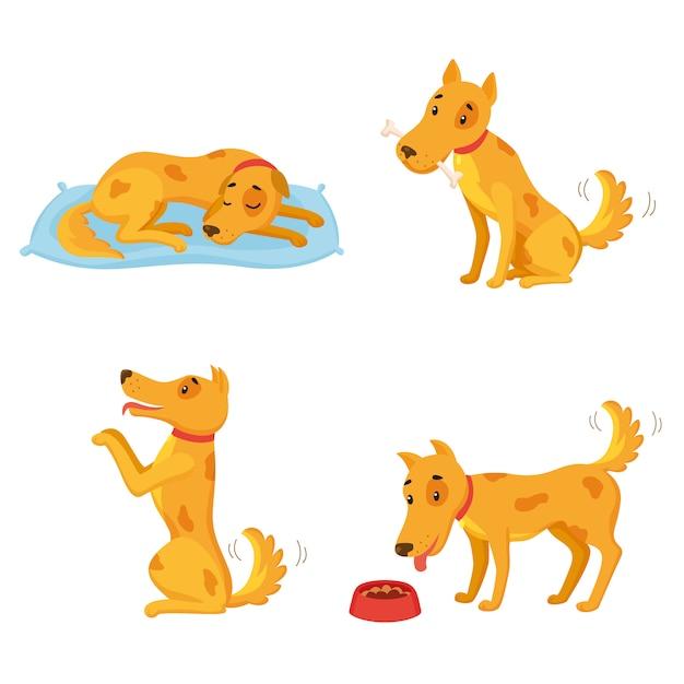 Perro en diferentes estados. conjunto de personajes de dibujos animados. dormir, roer hueso, actuar, comer. vector gratuito