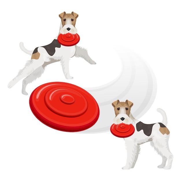 Perro gracioso de fox terrier con frisbee rojo Vector Premium