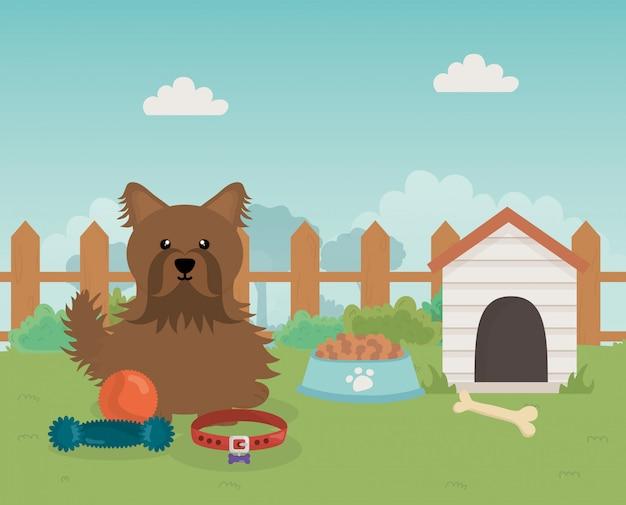 Perro marrón con comida de la casa y juguetes cuidado de mascotas Vector Premium