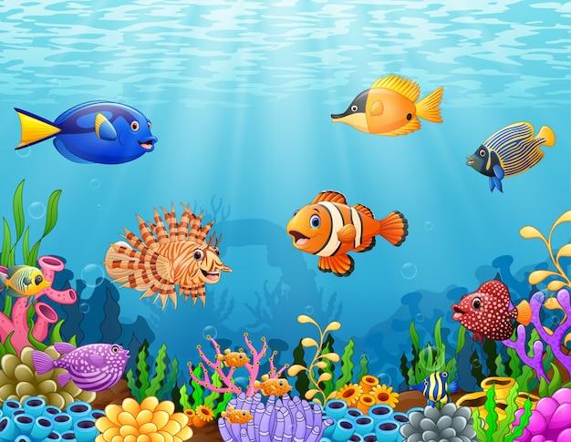 Pez De Dibujos Animados Bajo El Mar