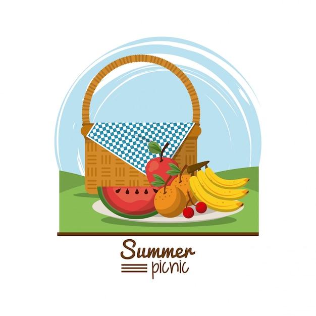 Picnic de verano con cesta de picnic y plato con frutas | Descargar ...