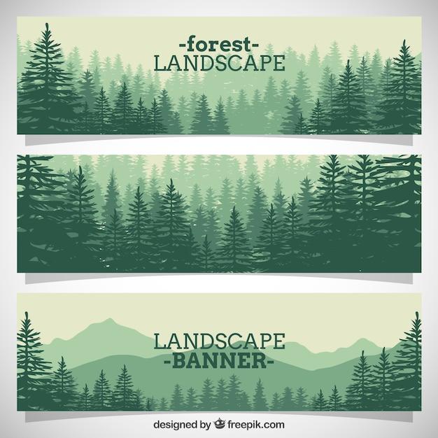 pinos llenos hermosos bosques banderas Vector Gratis