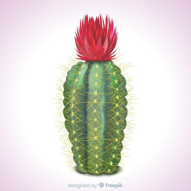 Planta de cactus en estilo realista vector gratuito