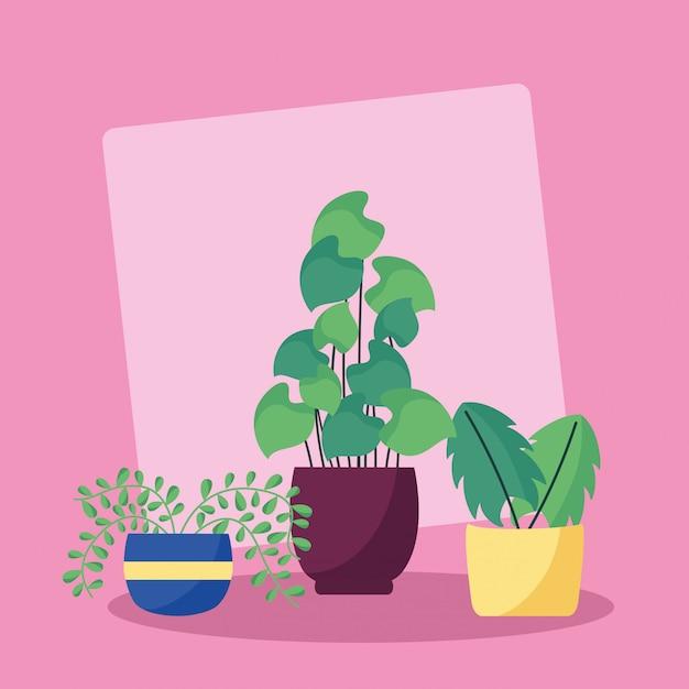 Plantas decorativas diseño de imagen plana vector gratuito