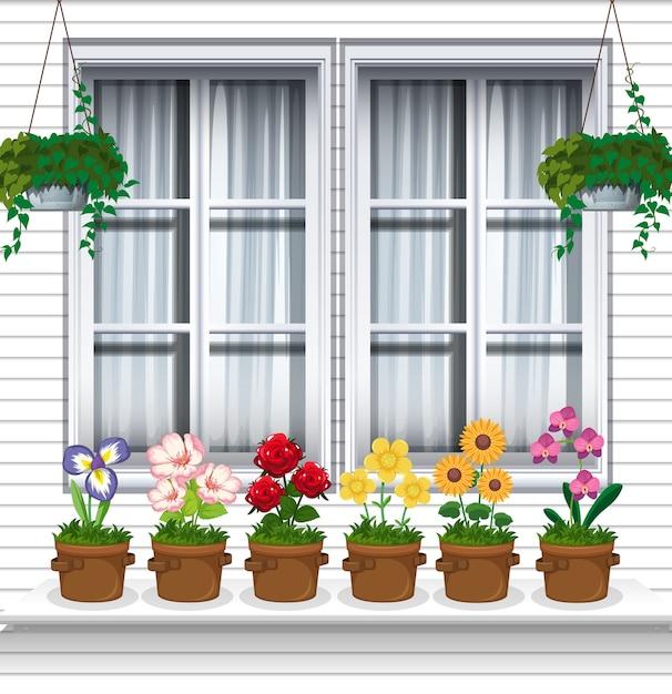 Plantas de flores cerca de la ventana vector gratuito