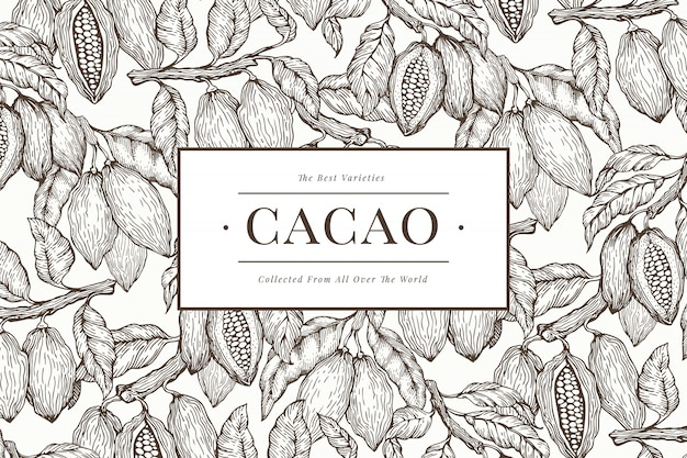 Plantilla de banner de cacao Vector Premium