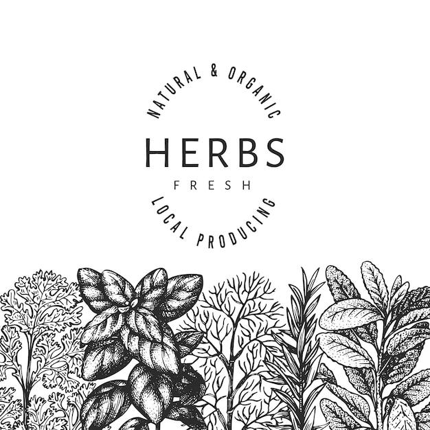 Plantilla de banner de hierbas culinarias. Vector Premium