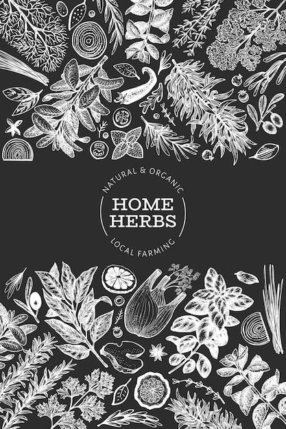 Plantilla de banner de hierbas culinarias Vector Premium