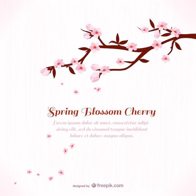 Plantilla de fondo con flores de cerezo   Descargar Vectores gratis