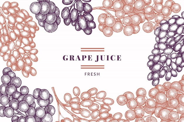 Plantilla de diseño de uva. ilustración de baya de uva vector dibujado a mano. bandera botánica retro estilo grabado. Vector Premium