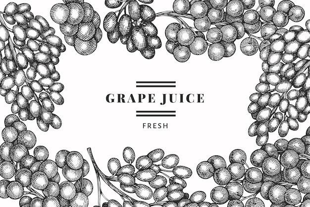 Plantilla de diseño de uva. Vector Premium