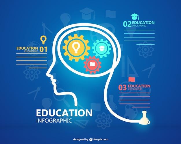 Plantilla de infografía de educación gratis vector gratuito
